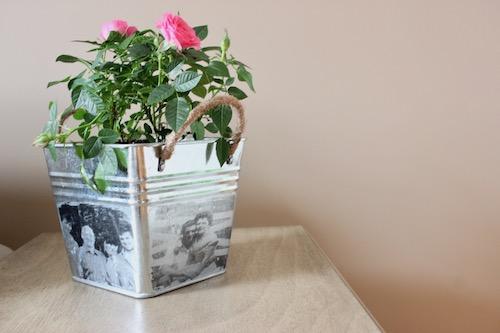DIY Photo Planter