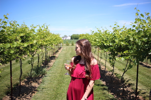 Exploring Huron County's Wineries & Craft Breweries
